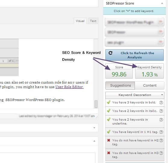 Image Result For WordPress Seo Score Plugin